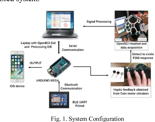 A tactile P300 based brain computer interface system for