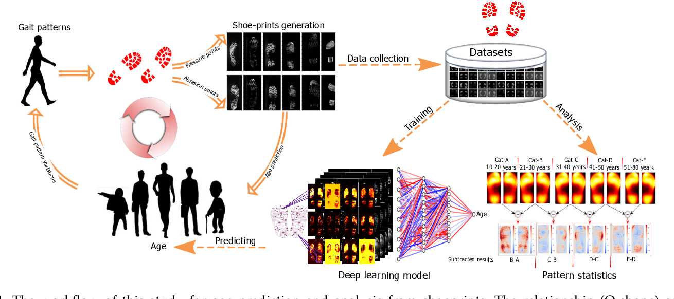 Figure 1 for Deep Learning Analysis and Age Prediction from Shoeprints