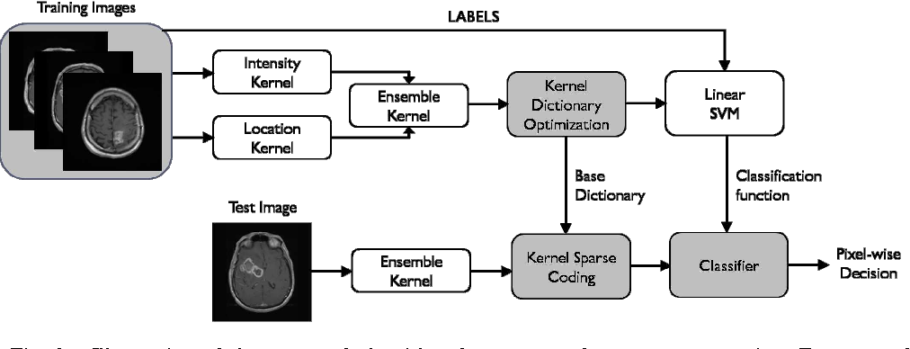 Figure 4 for Kernel Sparse Models for Automated Tumor Segmentation