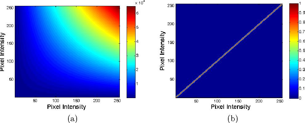 Figure 1 for Kernel Sparse Models for Automated Tumor Segmentation