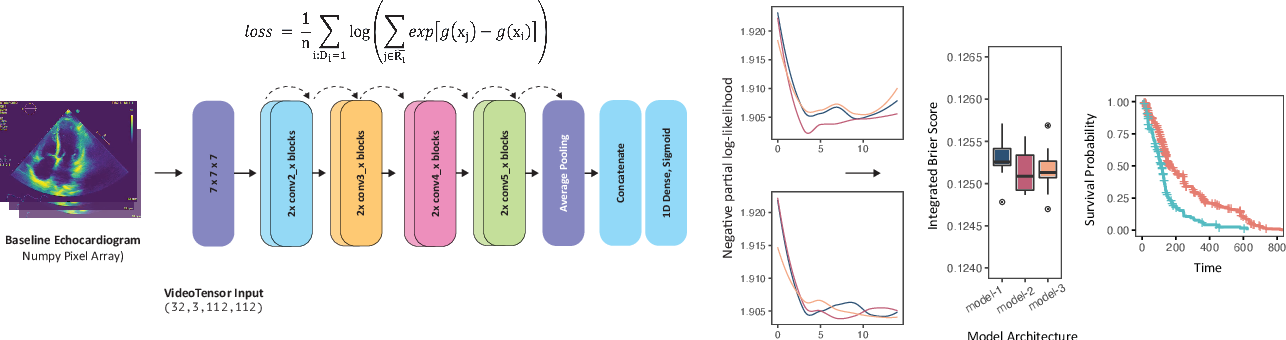 Figure 1 for Simulating time to event prediction with spatiotemporal echocardiography deep learning