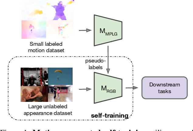 Figure 1 for Motion-Augmented Self-Training for Video Recognition at Smaller Scale