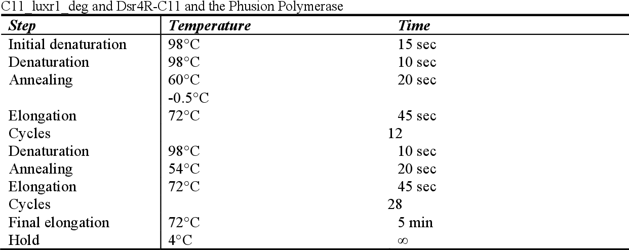 Table 2-15: PCR temperature program for a touch-down PCR for a 2.5 kb fragment and degenerated primers C11_luxr1_deg and Dsr4R-C11 and the Phusion Polymerase