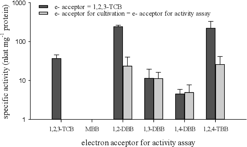 Figure 3-9: Specific activities measured in resting cell activity assays. Resting cells were cultivated prior to activity assays with 1,2,3-trichlorobenzene (black bars) or with the same electron acceptor which was used in the activity assay (grey bars). Shown are the means of three separate 96-well microtiter plate photometer-based activity assay measurements ± SD. Each of the replicas contained a different inoculum of strain CBDB1 grown on the respective electron acceptor. TCB – trichlorobenzene, MBB – monobromobenzene, DBB – dibromobenzene, TBB – tribromobenzene.