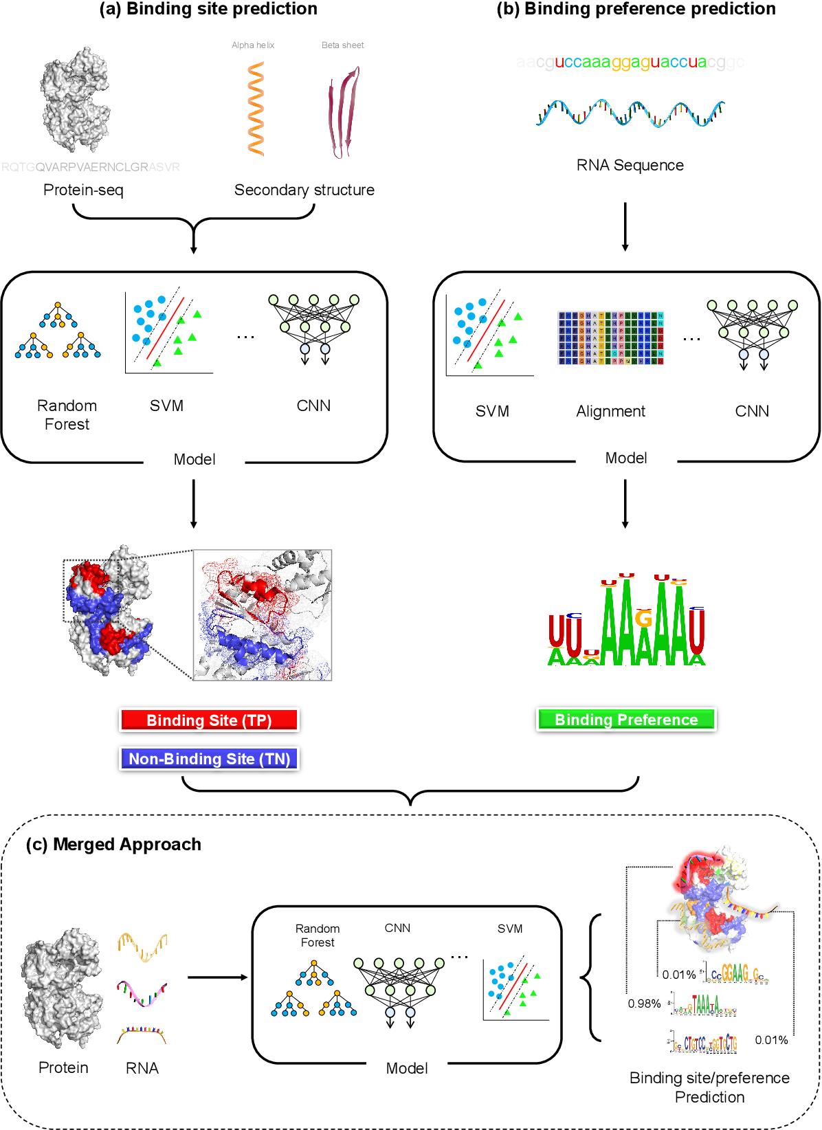 Figure 3 for Protein-RNA interaction prediction with deep learning: Structure matters