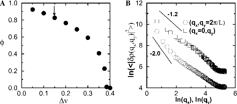 Fig. 8. (A) The order parameter /, as defined in the text, versus the noise strength Dv. The arrow shows the value of Dv at which the fluctuations of the ordered state were calculated. (B) The scaling behavior of the equal time correlation function for the density fluctuations in the two limits can be calculated analytically (see [14,15] for details) in two dimensions. The lines illustrate the predicted slopes.
