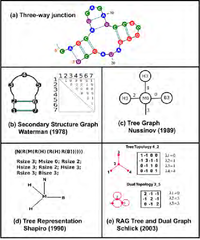 Figure 2 from network theory tools for rna modeling semantic scholar figure 2 graph theoretical models of an rna 2d structure for a three way ccuart Image collections