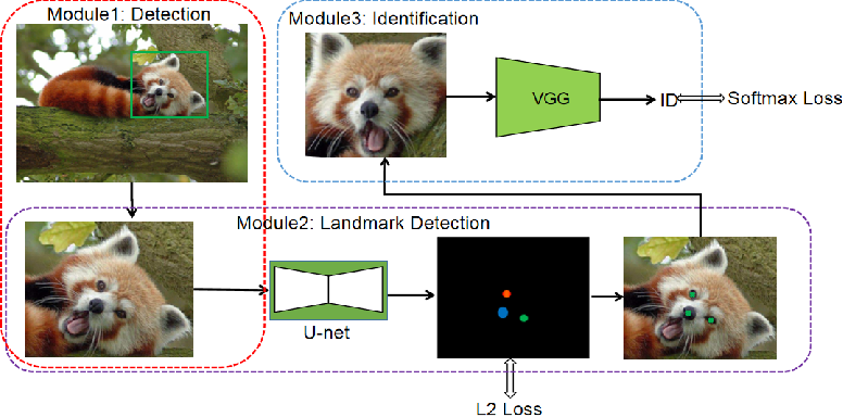 Figure 3 for Distinguishing Individual Red Pandas from Their Faces