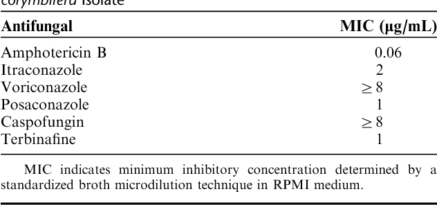 TABLE 1. In Vitro Antifungal Susceptibility of the Absidia corymbifera Isolate