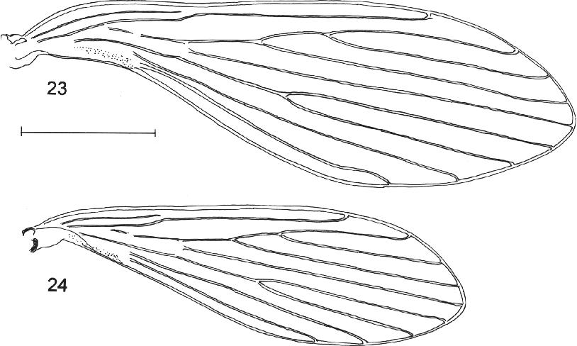 figure 23-24