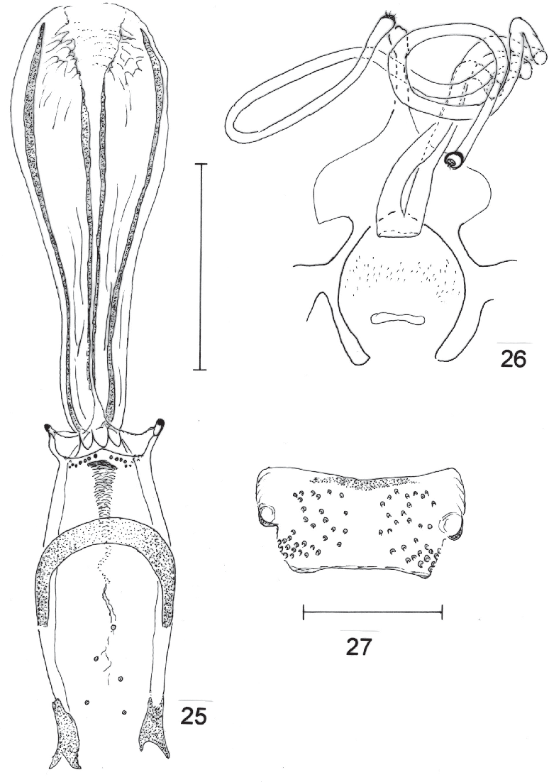 figure 25-27