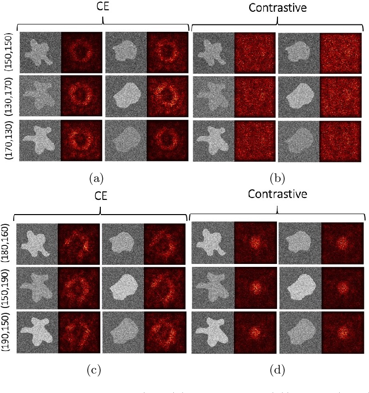 Figure 4 for The Effect of the Loss on Generalization: Empirical Study on Synthetic Lung Nodule Data