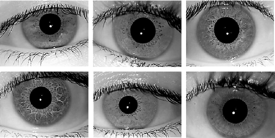 Figure 4 for DeepIris: Iris Recognition Using A Deep Learning Approach