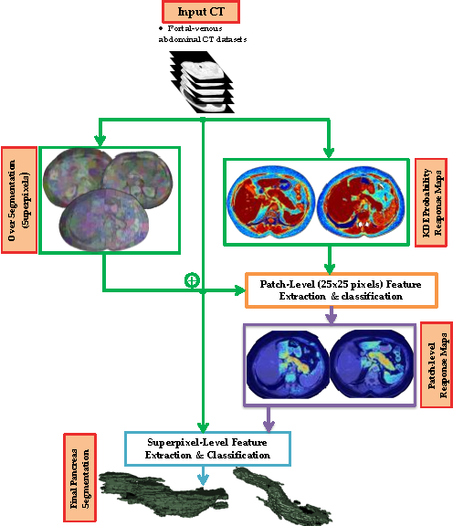 Figure 3 for A Bottom-Up Approach for Automatic Pancreas Segmentation in Abdominal CT Scans