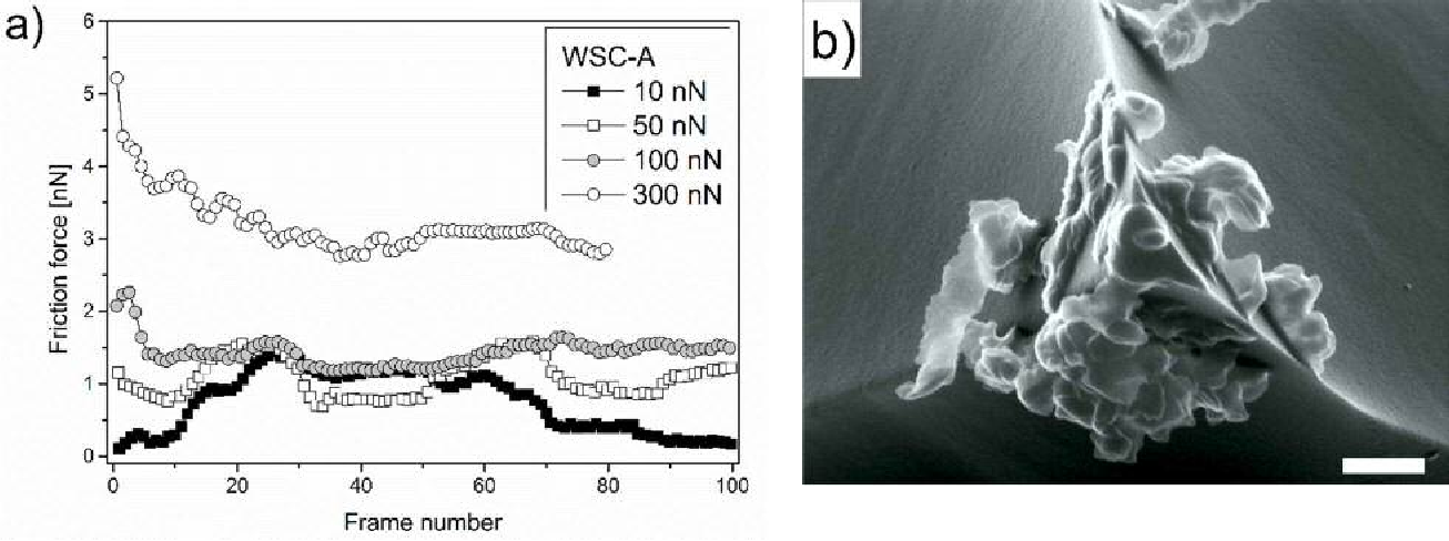 Figure 5. a) Friction force as a function of frame number measured with FFM during wear experiments for WSC-A. (b) SEM image of the AFM tip after wear experiments at 300 nN. Image was acquired with acceleration voltage of 15.0 kV; at magnification x 55,000; scale bar: 250 nm.