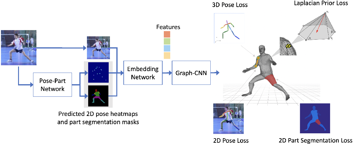 Figure 3 for Learning Nonparametric Human Mesh Reconstruction from a Single Image without Ground Truth Meshes