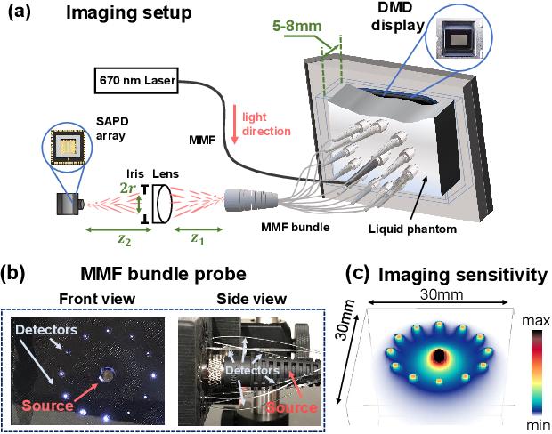 Figure 2 for Imaging dynamics beneath turbid media via parallelized single-photon detection