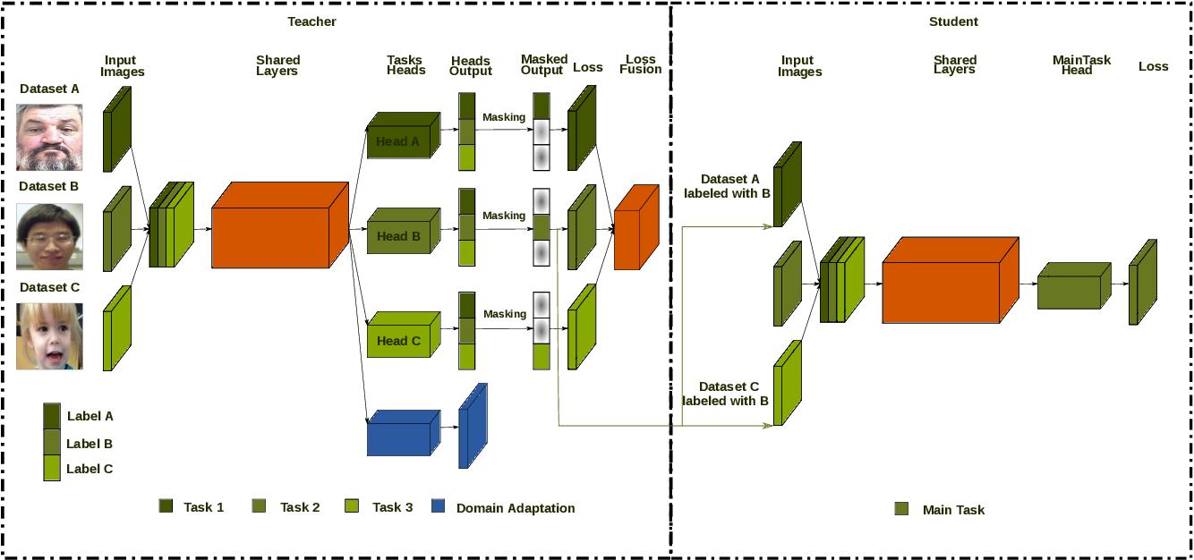 Figure 1 for Distill-2MD-MTL: Data Distillation based on Multi-Dataset Multi-Domain Multi-Task Frame Work to Solve Face Related Tasksks, Multi Task Learning, Semi-Supervised Learning