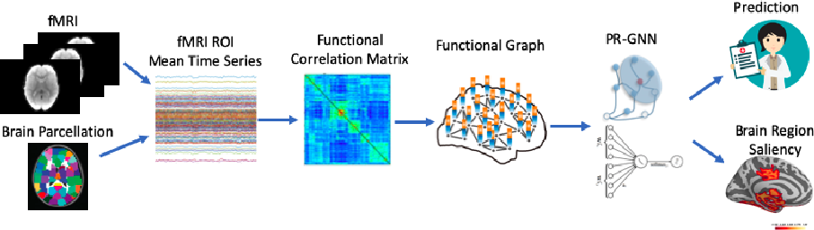 Figure 1 for Pooling Regularized Graph Neural Network for fMRI Biomarker Analysis
