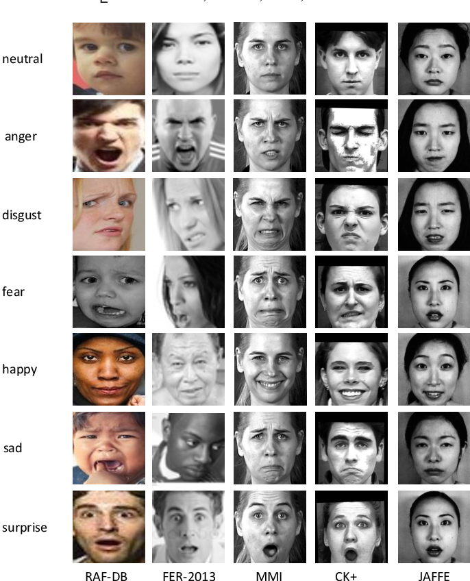 Figure 3 for Omni-supervised Facial Expression Recognition: A Simple Baseline
