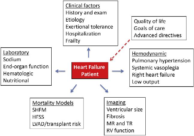Figure 1 from advanced stage d heart failure a statement from the assessment domains in advanced stage d heart failure shfm ccuart Image collections