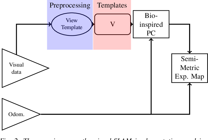 Figure 2 for ViTa-SLAM: A Bio-inspired Visuo-Tactile SLAM for Navigation while Interacting with Aliased Environments