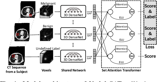 Figure 1 for Relational Learning between Multiple Pulmonary Nodules via Deep Set Attention Transformers