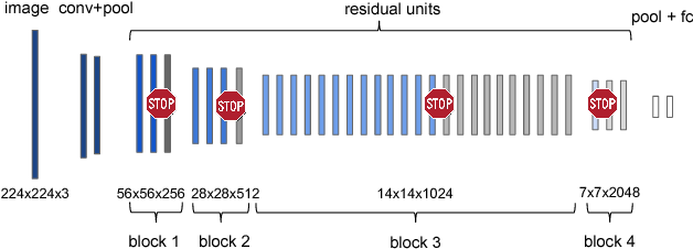 Figure 3 for Spatially Adaptive Computation Time for Residual Networks