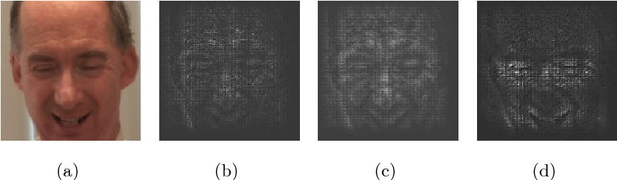 Figure 3 for Saliency Supervision: An Intuitive and Effective Approach for Pain Intensity Regression