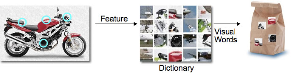 FIGURE 3.5 – The illustration of the Bag of visual Words approach