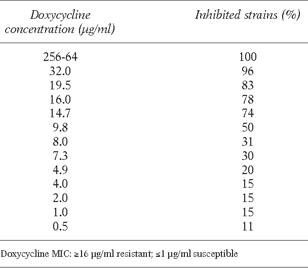 An in vitro and ex vivo study on two antibiotic-based