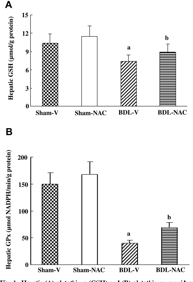Fig. 1. Hepatic (A) glutathione (GSH) and (B) glutathione peroxidase (GPx) in all rats. BDL-NAC/Sham-NAC: BDL/Sham rats receiving N-acetylcysteine; BDL-V/Sham-V: BDL/Sham rats receiving vehicle; aP < 0.01 vs. Sham-V; bP < 0.01 vs. BDL-V.