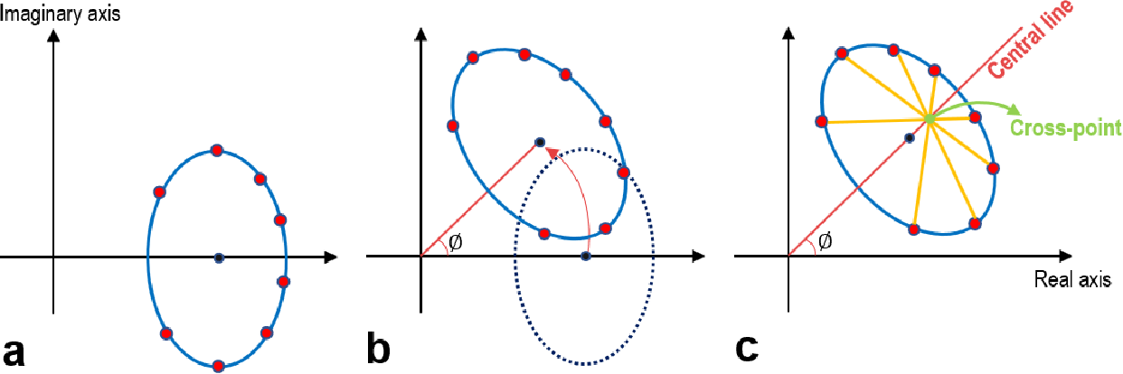 Figure 1 for Constrained Ellipse Fitting for Efficient Parameter Mapping with Phase-cycled bSSFP MRI