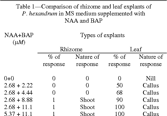 Asexual reproduction in plants rhizomes deleuze