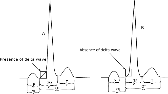 figure 1 from wolff