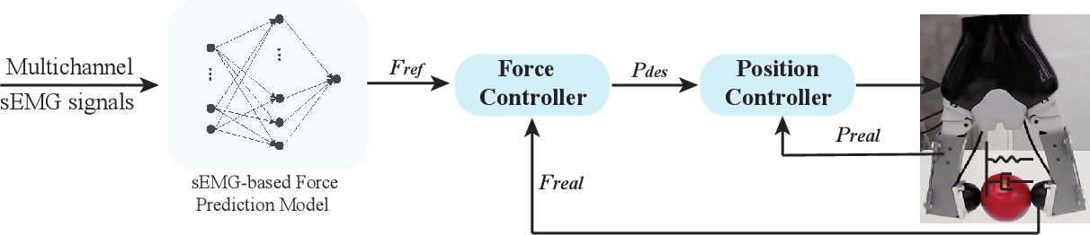 Figure 4 for Force-guided High-precision Grasping Control of Fragile and Deformable Objects using sEMG-based Force Prediction