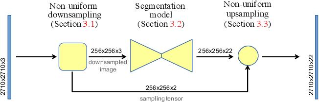 Figure 3 for Efficient Segmentation: Learning Downsampling Near Semantic Boundaries