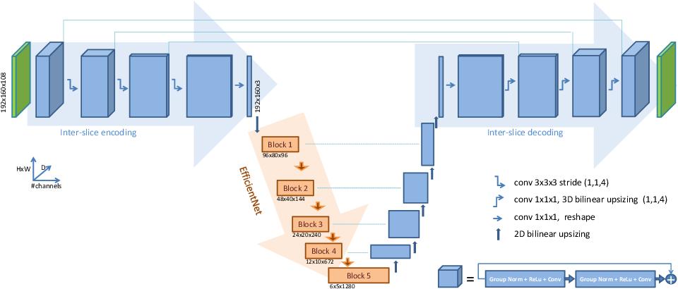 Figure 1 for Efficient embedding network for 3D brain tumor segmentation