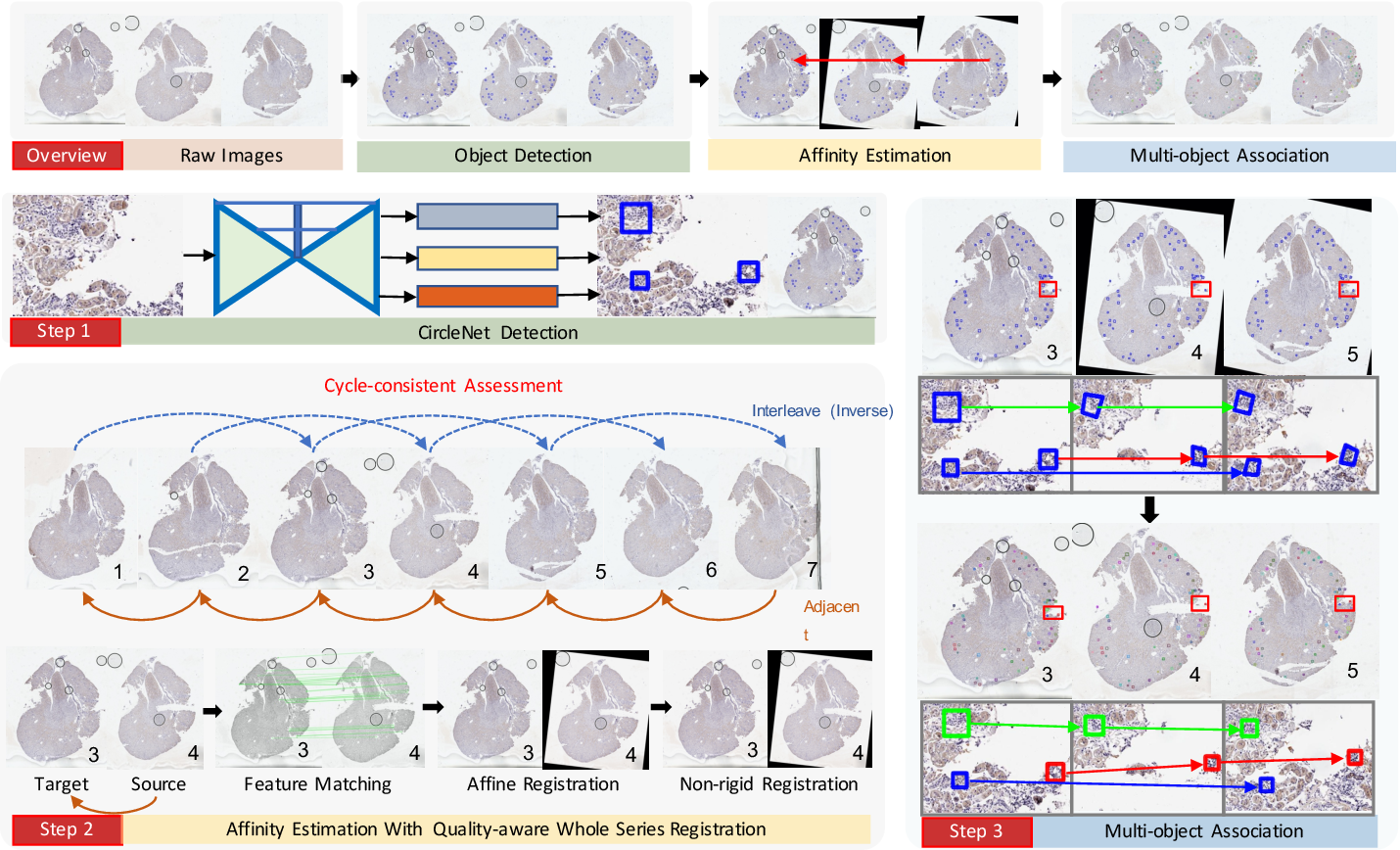 Figure 2 for Map3D: Registration Based Multi-Object Tracking on 3D Serial Whole Slide Images