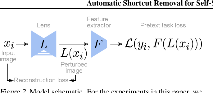 Figure 3 for Automatic Shortcut Removal for Self-Supervised Representation Learning