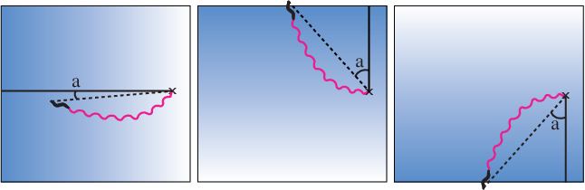 Figure 2: Illustration of fitness evaluation conditions. The gradient in the background represents the chemical concentration (blue). Starting point (x). Worm trace over time (magenta). Difference in angle (a) between the gradient peak (solid line) and the head of the worm at time t (dashed line).
