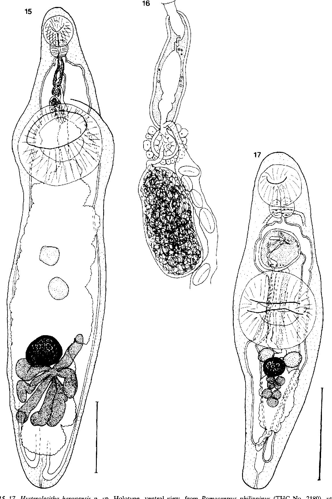 figure 15-17