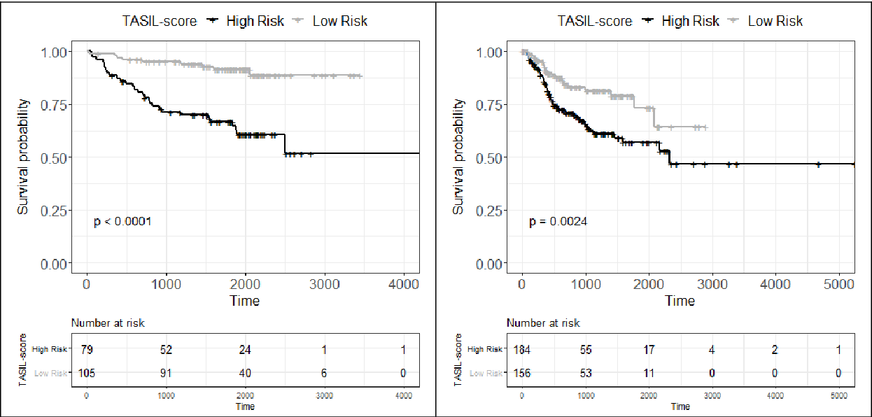 Figure 3 for A digital score of tumour-associated stroma infiltrating lymphocytes predicts survival in head and neck squamous cell carcinoma