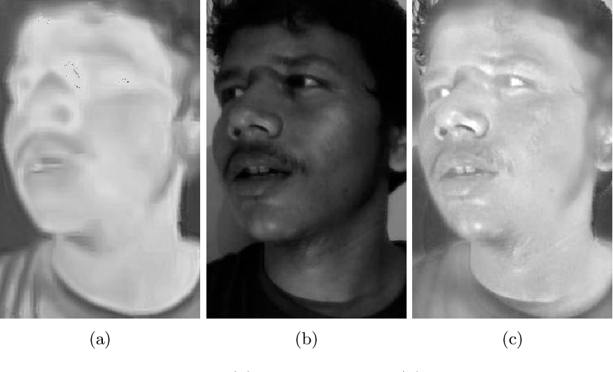Figure 4 for Illumination-invariant Face recognition by fusing thermal and visual images via gradient transfer