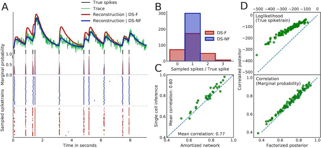Figure 3 for Fast amortized inference of neural activity from calcium imaging data with variational autoencoders