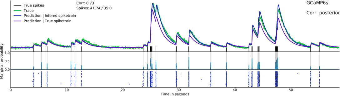 Figure 4 for Fast amortized inference of neural activity from calcium imaging data with variational autoencoders