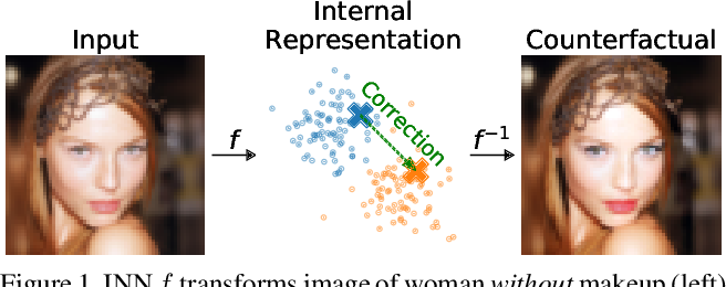 Figure 1 for ECINN: Efficient Counterfactuals from Invertible Neural Networks
