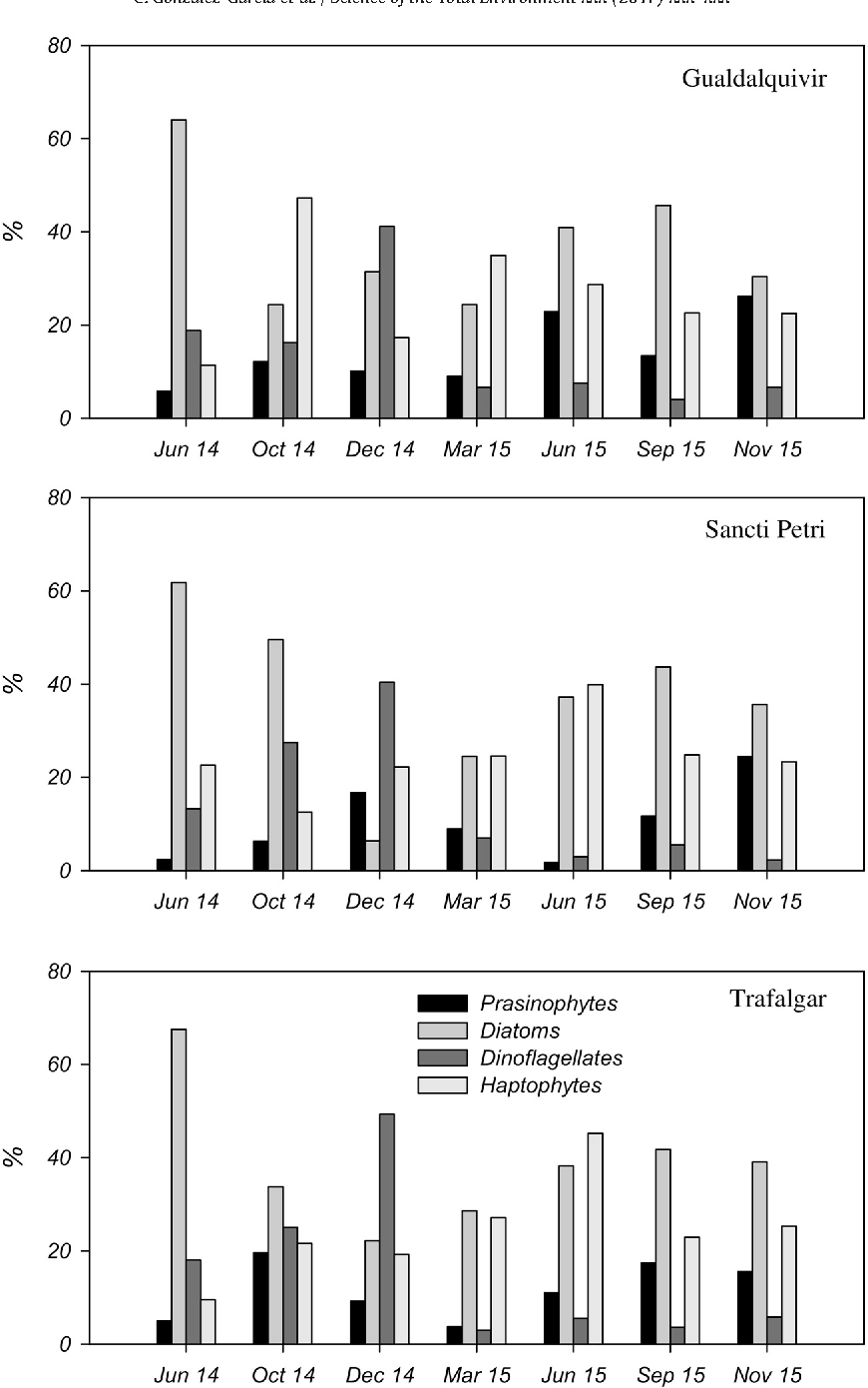 Fig. 8. Mean proportions of microphytoplankton groups (CHEMTAX results) with respect to total chlorophyll a for the eight cruises during the two years of study.