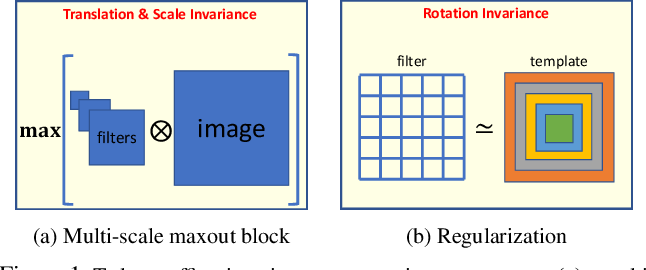 Figure 1 for Towards Learning Affine-Invariant Representations via Data-Efficient CNNs