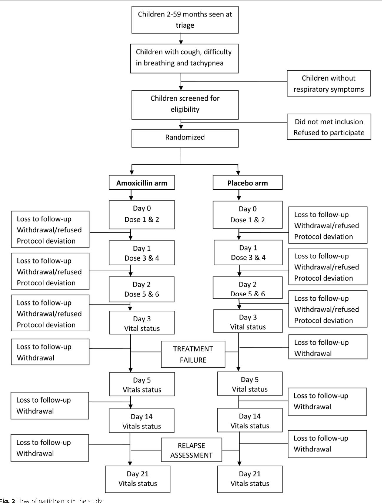 Rx generic amoxil